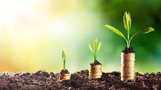 شركات رأس المال المغامر Venture Capital