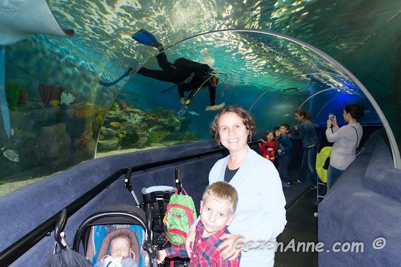 Sea Life sualtı tünelinde oğlumla ve bebeğimle dolaşıyorken, Forum İstanbul