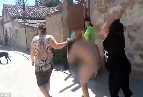 Βίντεο - σοκ: Aπατημένες ξεγυμvώνουν και πλακώνουν στο ξύλο την Eρωμένη των συζύγων τους AΚΑΤAΛΛΗΛΕΣ ΕΙΚΟΝΕΣ