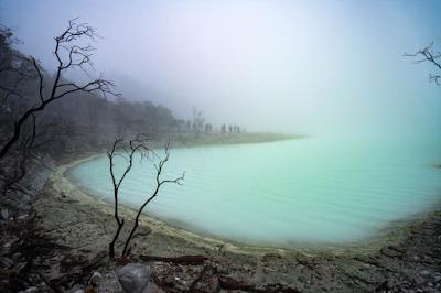Thick Fog in Kawah Putih Bandung