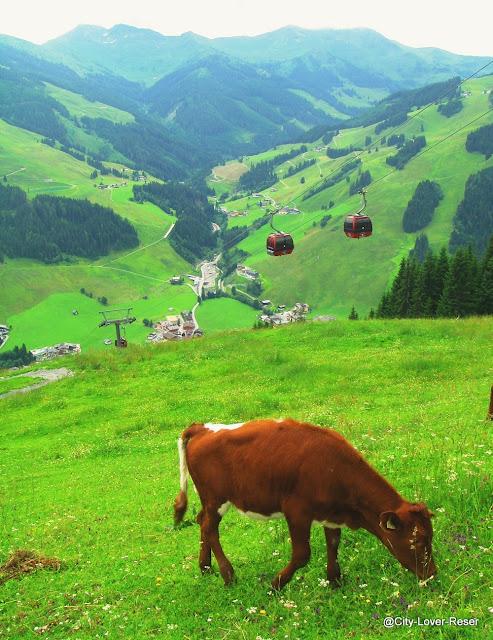 vandra i Saalbach