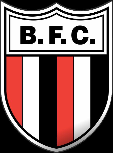 Resultado de imagem para Botafogo/SP