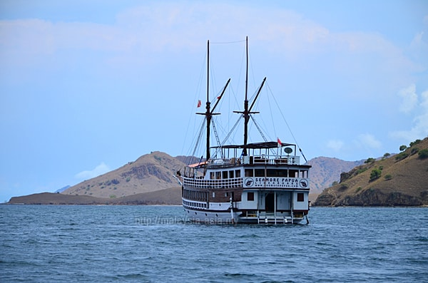 Komodo Island Live On Board