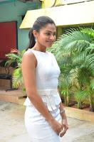 Andrea Jeremiah Stills in White Dress at Taramani Success Meet .COM 0002.jpg