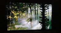 εικόνα με Dolby vision στην έκθεση CES 2017