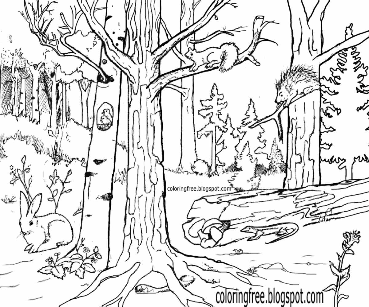 Coloring Pages Of Wetland Animals : Free coloring pages printable pictures to color kids