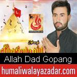 https://www.humaliwalyazadar.com/2018/08/allah-dad-gopang-nohay-2019.html