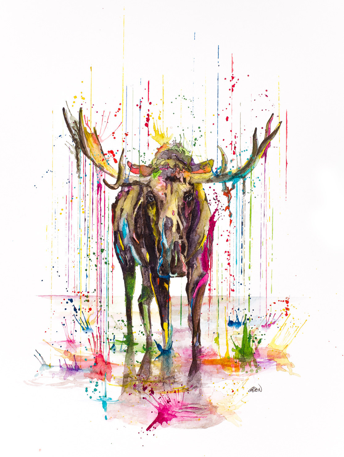 07-Moose-Philipp-Grein-Animal-Paintings-in-Splashes-of-Color-www-designstack-co