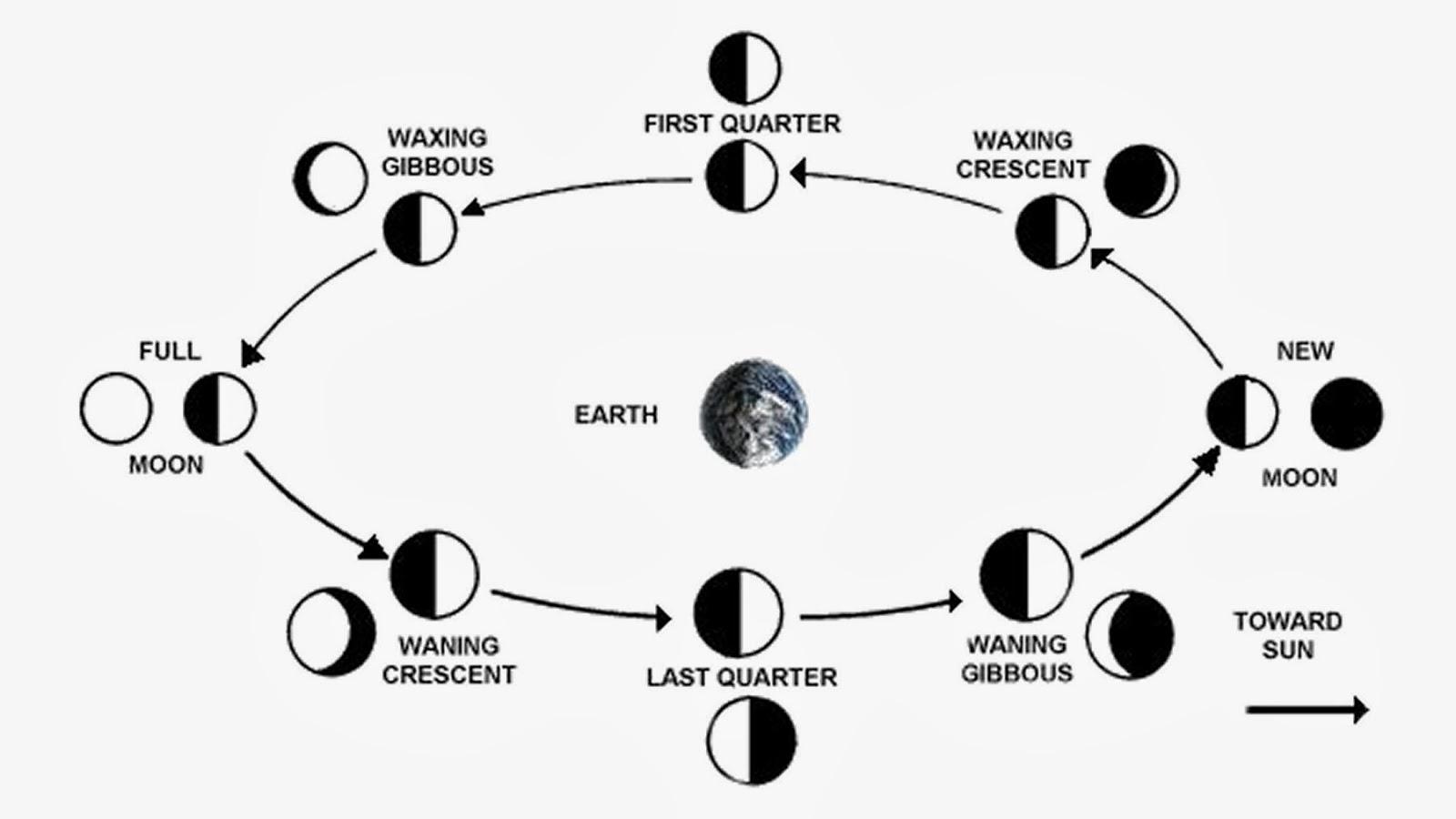 Pollution Essay Writing Diagram Lunar