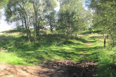 Junction in paths on Muir of Dinnet