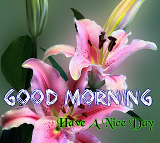 Image Of Good Morning Video Tamil Song Free Download Good Morning