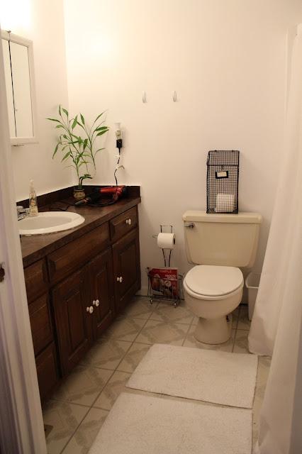 Ten June Rental Master Bathroom Updates