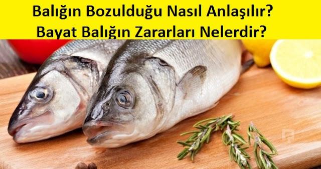 Balığın Bozulduğu Nasıl Anlaşılır? Bayat Balığın Zararları Nelerdir?