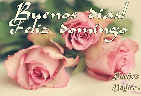 Imagens E Frases De Domingo: Frases Para Saludar Feliz Domingo
