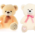 Min 50% Off: Miss & Chief Teddy Bear Starting From Rs.132 ( worth of Rs.399)