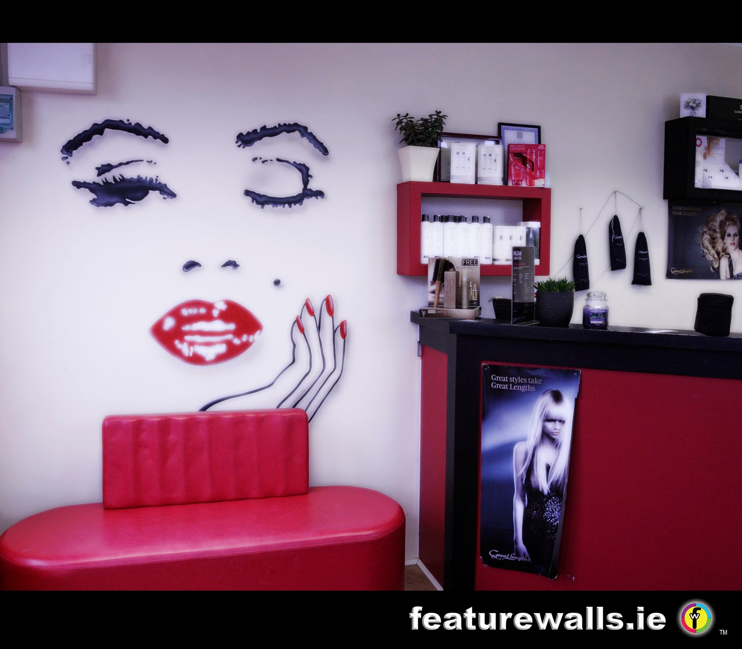 Mural Painting Professionals Featurewalls.ie: HAIR AND