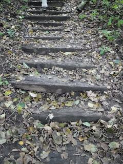 wooden rail tie stairs at Ravine Park in Sioux City, Iowa