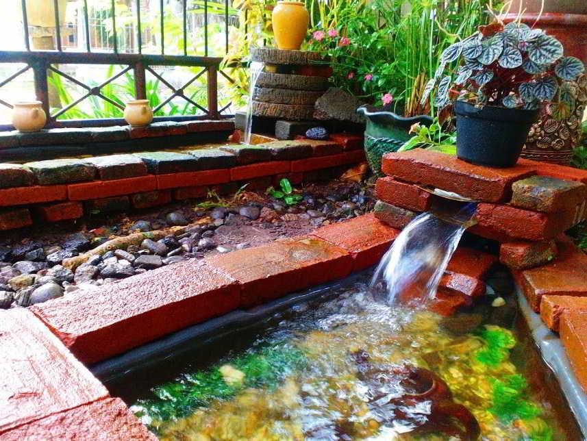 Desain Kolam Ikan Minimalis Modern