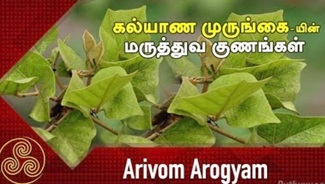 Arivom Arogyam | PuthuYugam Tv