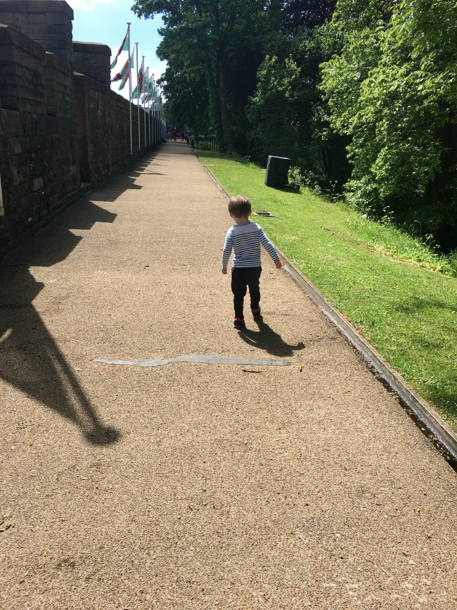 a-toddler-explores-cardiff-castle-world-war-two-shelters-view-of-toddler-walking-on-battlements