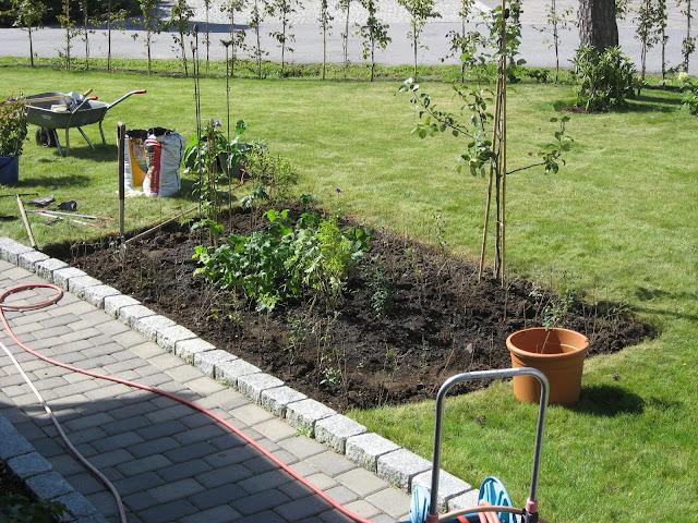 Hekken rundt bedet o.a. er plantet