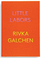 Rivka Galchen, review, nonfiction