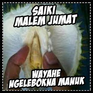 DP BBM Lucu bahasa Jawa 2