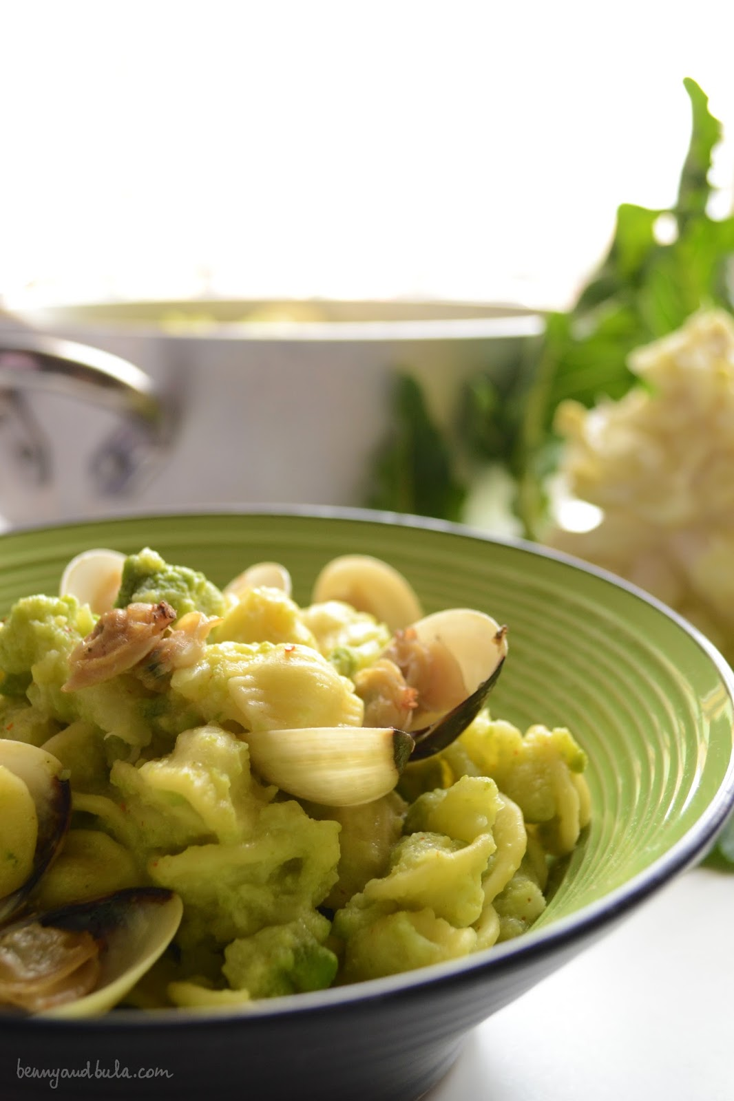ricetta orecchiette broccolo romanesco e vongole/ roman broccolo and clams pasta recipe