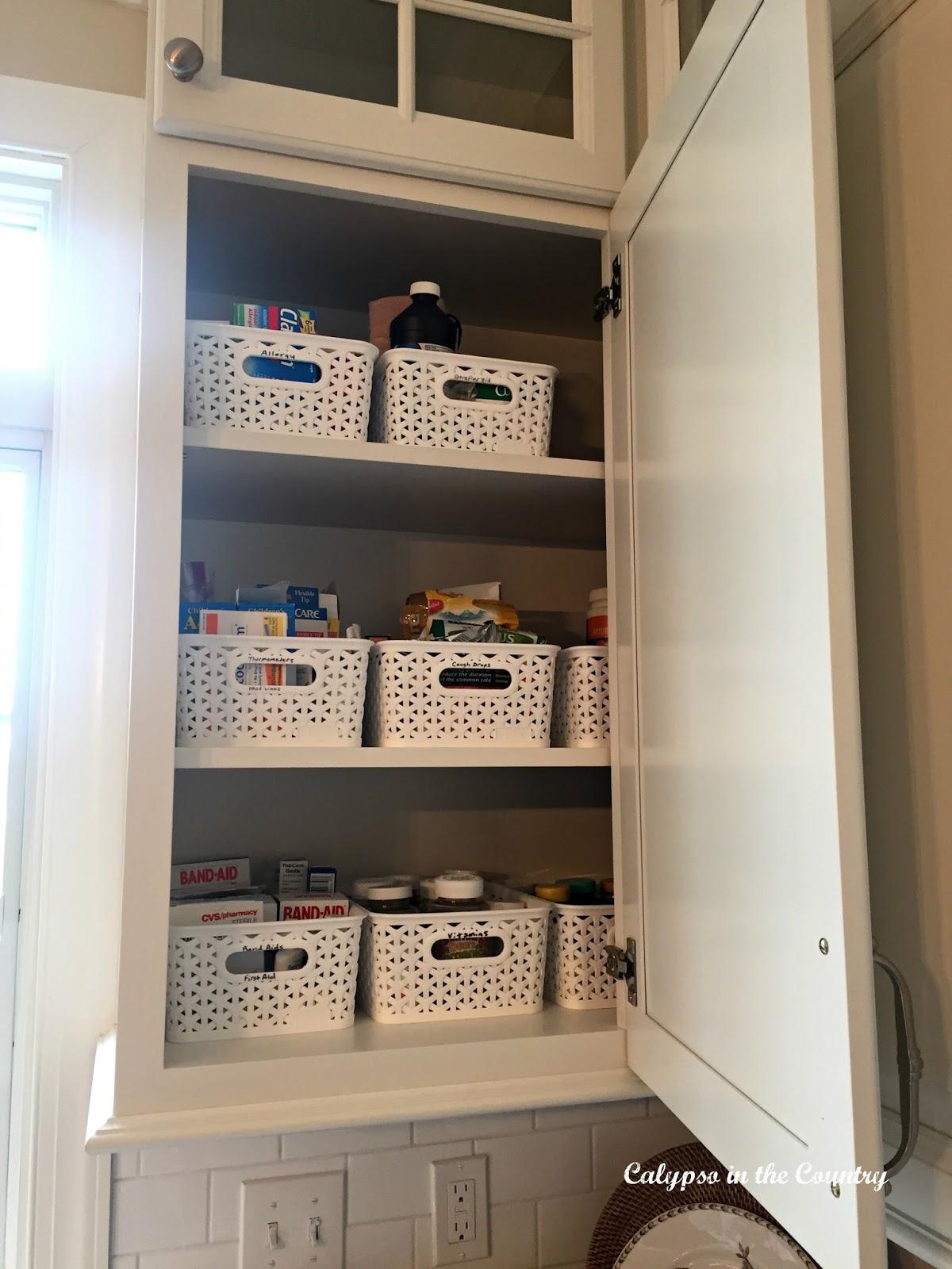 Storage Bins in the Kitchen