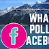 What Is Poll On Facebook