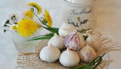 Manfaat Bawang Putih Dari Alquran Hingga Kedokteran