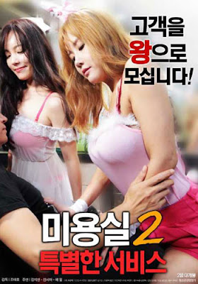 [18+] Beauty Salon Special Services 2 2018 HDRip 720p Poster