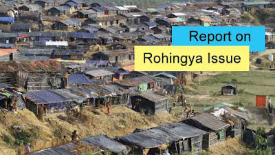 Report on Rohingya Crisis