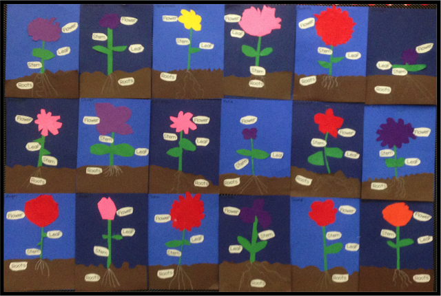 Parts of a plant art project for kindergarten. Easy paper craft art project to demonstrate the different parts of a plant and what plants need.
