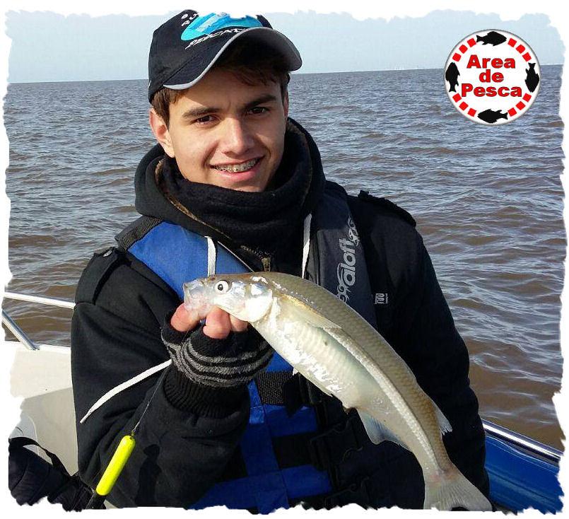 El sitio sobre la pesca los tipos de los peces