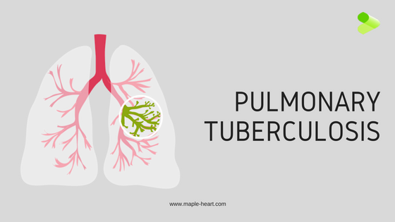 animated lungs showing pulmonary tuberculosis