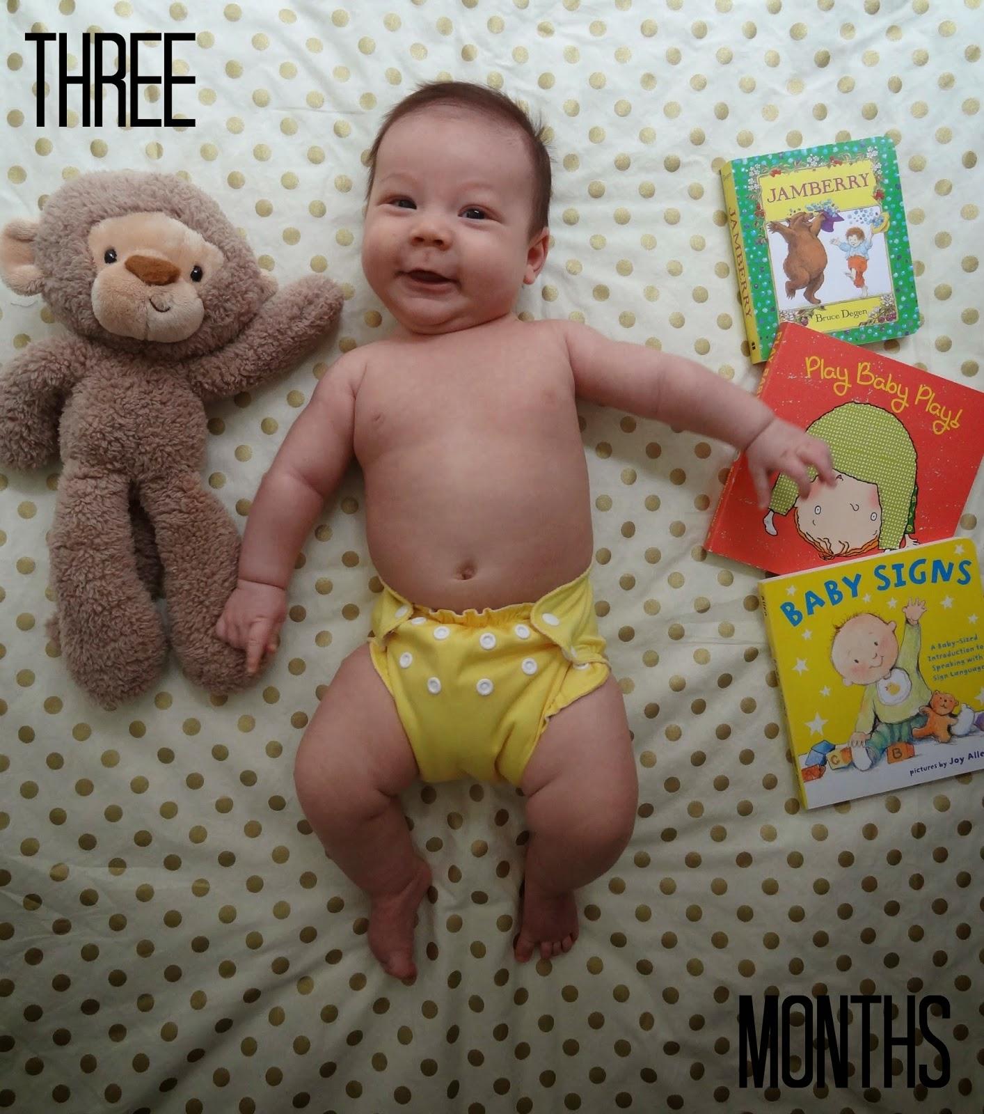 Flour De Lis Meet Baby Boy