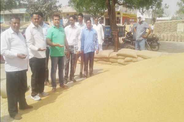 hathin-mandi-wheat-bought-from-farmers-dc-maniram-sahrma