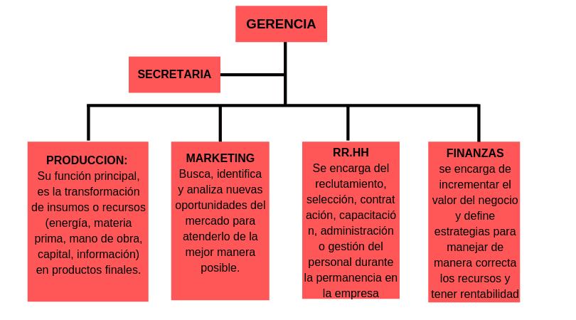 ejemplo de organigrama informativo
