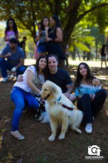 Adestrar cães em São Paulo
