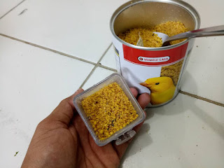 eggfood verselelaga