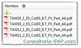 Descarga SAP TAW10 y TAW12 en espanol - Consultoria-SAP