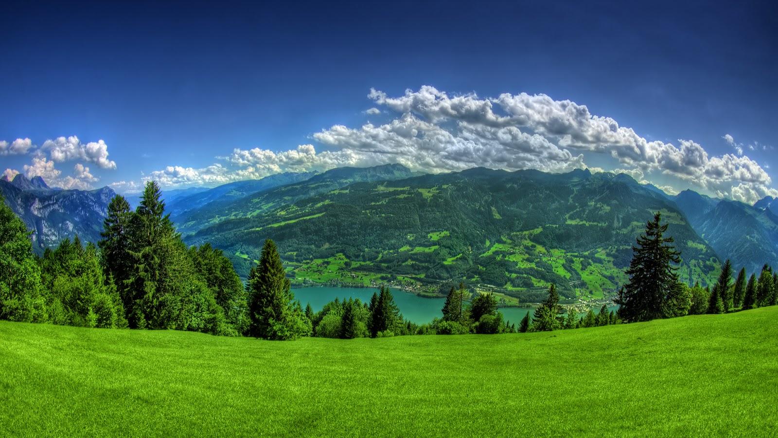 Wallpaper proslut lush green grass mountains full hd - Green nature wallpaper full hd ...