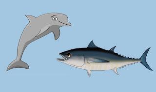 fabula el atun y el delfin