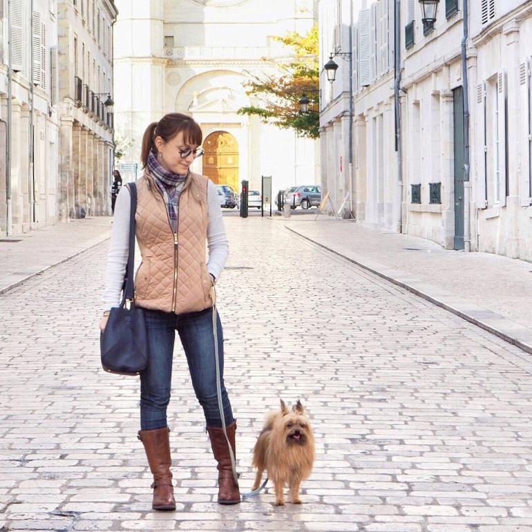Comment je voyage avec mon chien louise grenadine blog for Hotels qui acceptent les chiens