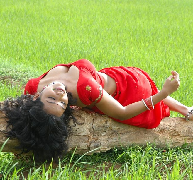 South Actress Teertha in Spicy Red Saree Hot View