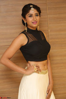 Roshni Prakash in a Sleeveless Crop Top and Long Cream Ethnic Skirt 061.JPG