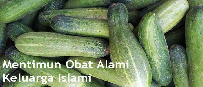Mentimun Obat Alami Keluarga Islami