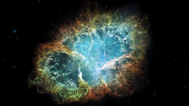 Did supernovae kill off large ocean animals at dawn of Pleistocene?