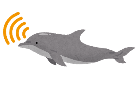 超音波を出すイルカのイラスト
